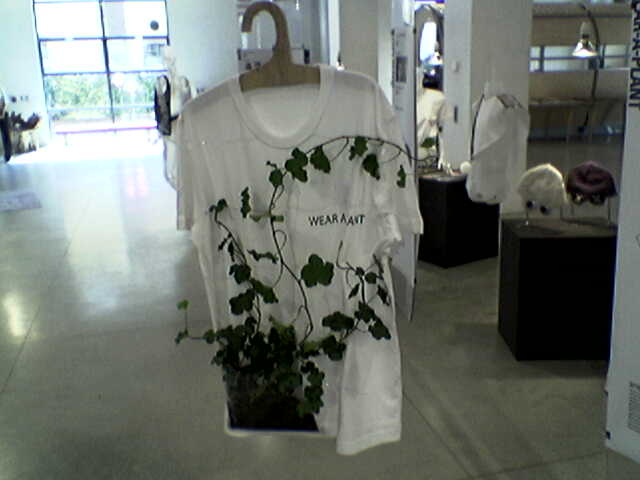 Foto 1 - Wear a plant